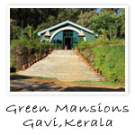 gavi hotels,gavi hotel images,green mansion gavi kerala india
